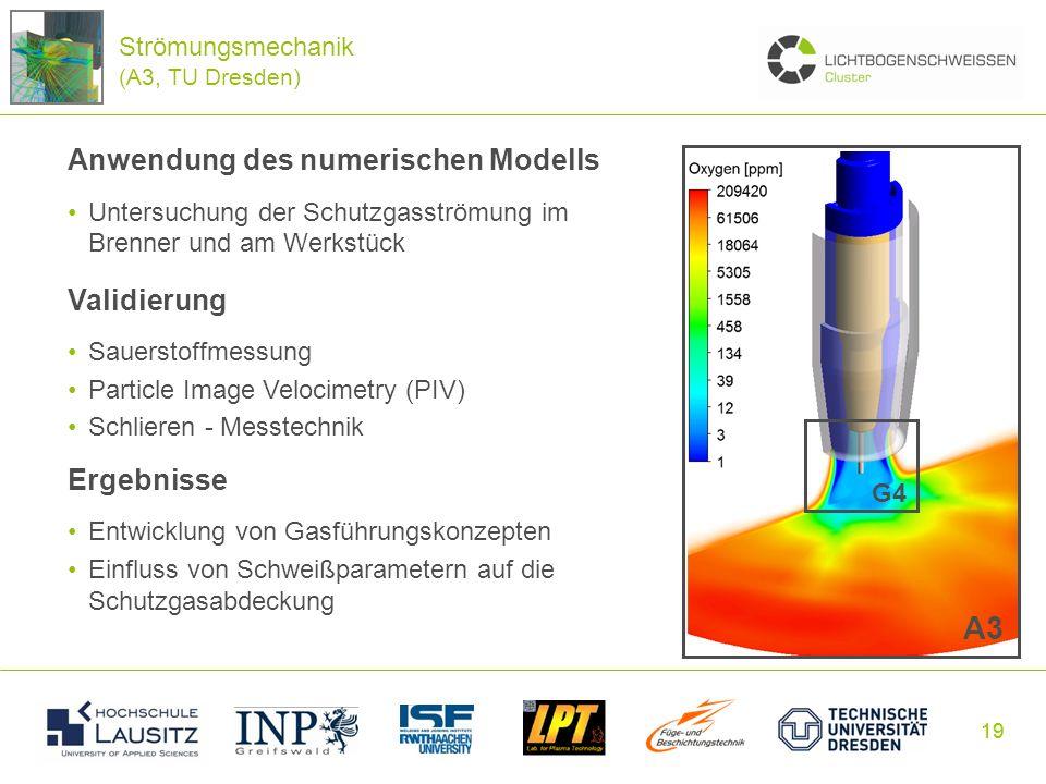 A3 Anwendung des numerischen Modells Validierung Ergebnisse