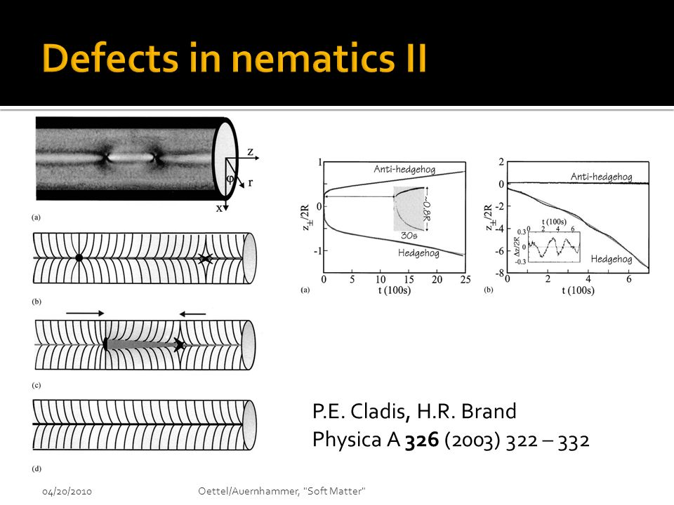 Defects in nematics II P.E. Cladis, H.R. Brand