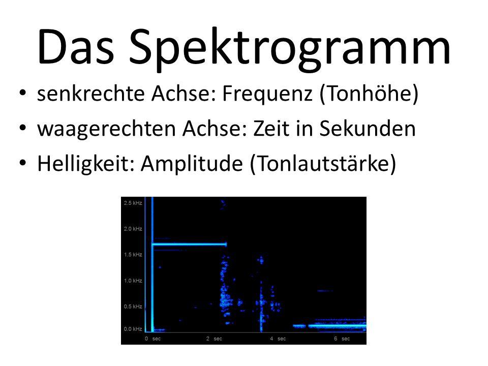 Das Spektrogramm senkrechte Achse: Frequenz (Tonhöhe)