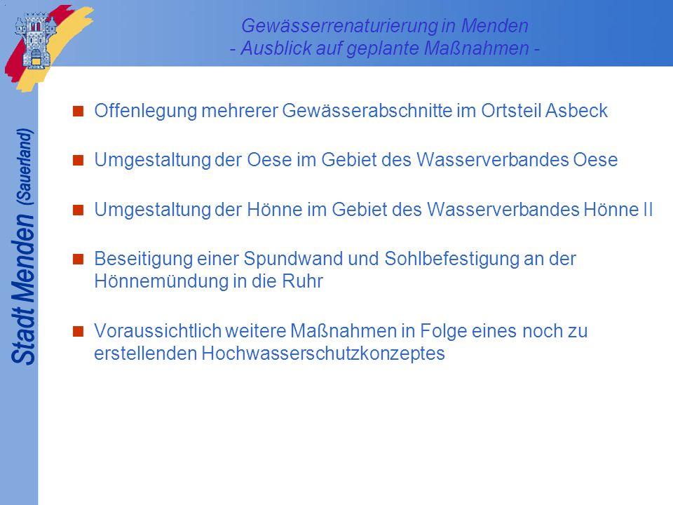 Gewässerrenaturierung in Menden - Ausblick auf geplante Maßnahmen -