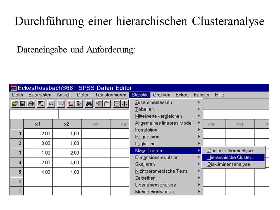 Durchführung einer hierarchischen Clusteranalyse