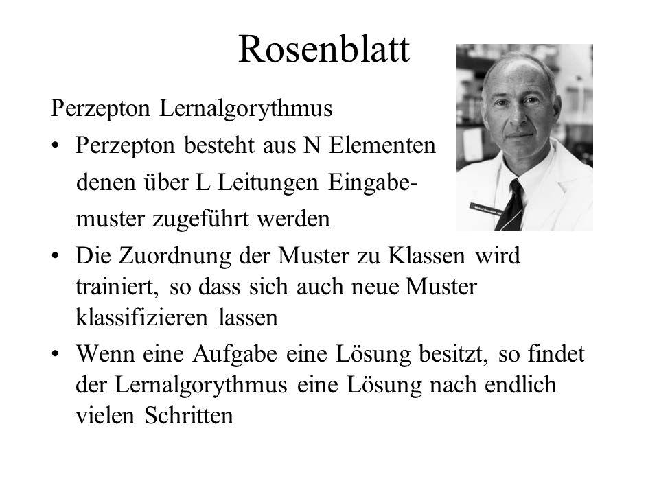 Rosenblatt Perzepton Lernalgorythmus Perzepton besteht aus N Elementen