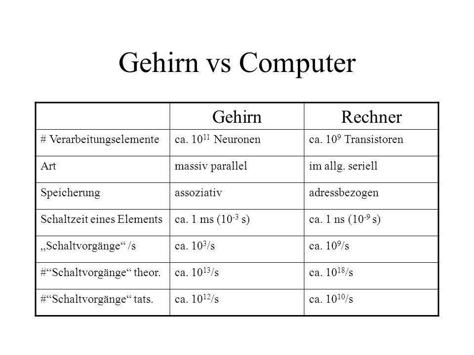 Gehirn vs Computer Gehirn Rechner # Verarbeitungselemente