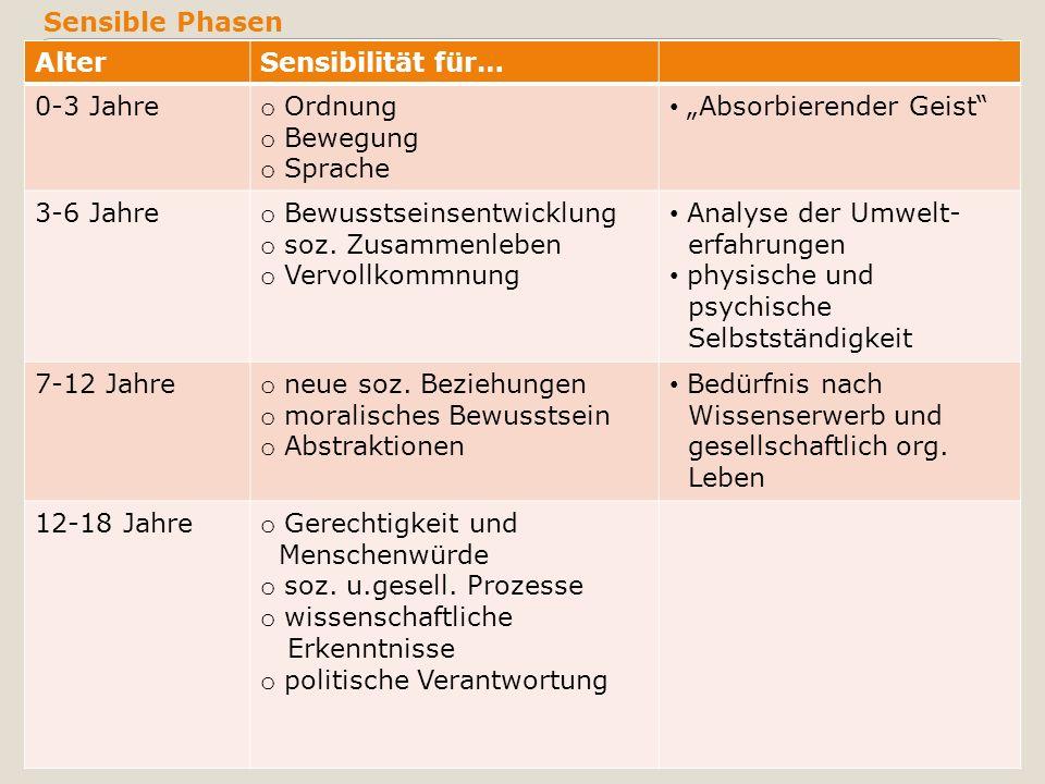 """Sensible Phasen Alter. Sensibilität für… 0-3 Jahre. Ordnung. Bewegung. Sprache. """"Absorbierender Geist"""