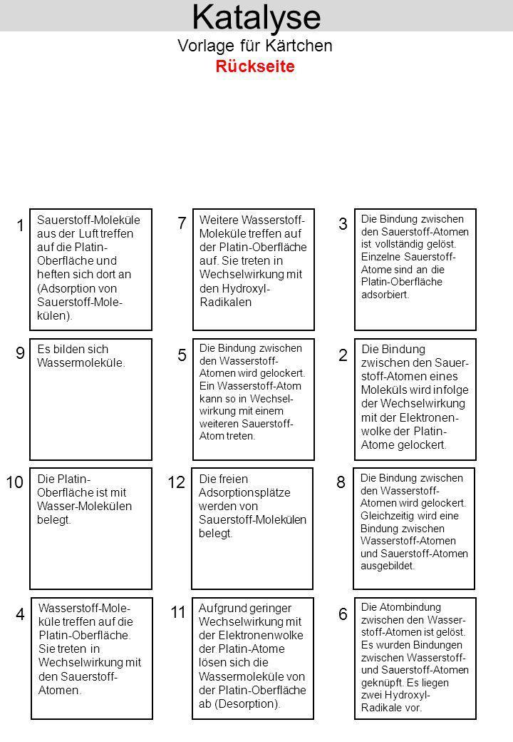 Katalyse Vorlage für Kärtchen Rückseite 1 7 3 9 5 2 10 12 8 4 11 6