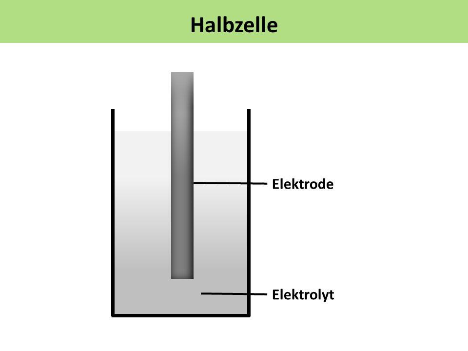 Halbzelle Elektrode Elektrolyt