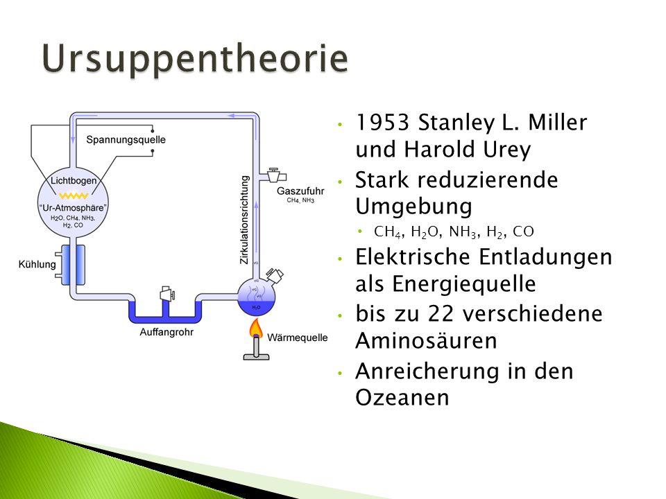 Ursuppentheorie 1953 Stanley L. Miller und Harold Urey