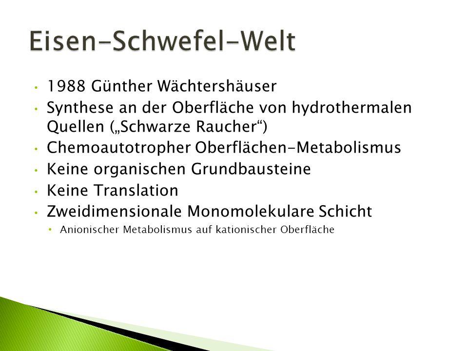 Eisen-Schwefel-Welt 1988 Günther Wächtershäuser