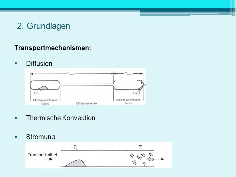 2. Grundlagen Transportmechanismen: Diffusion Thermische Konvektion