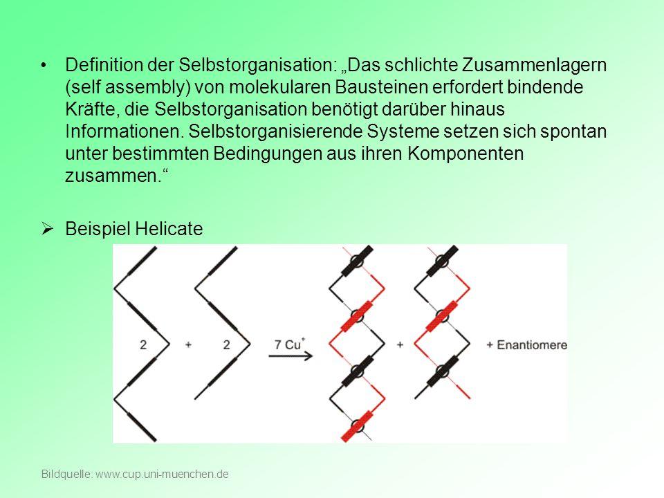 """Definition der Selbstorganisation: """"Das schlichte Zusammenlagern (self assembly) von molekularen Bausteinen erfordert bindende Kräfte, die Selbstorganisation benötigt darüber hinaus Informationen. Selbstorganisierende Systeme setzen sich spontan unter bestimmten Bedingungen aus ihren Komponenten zusammen."""