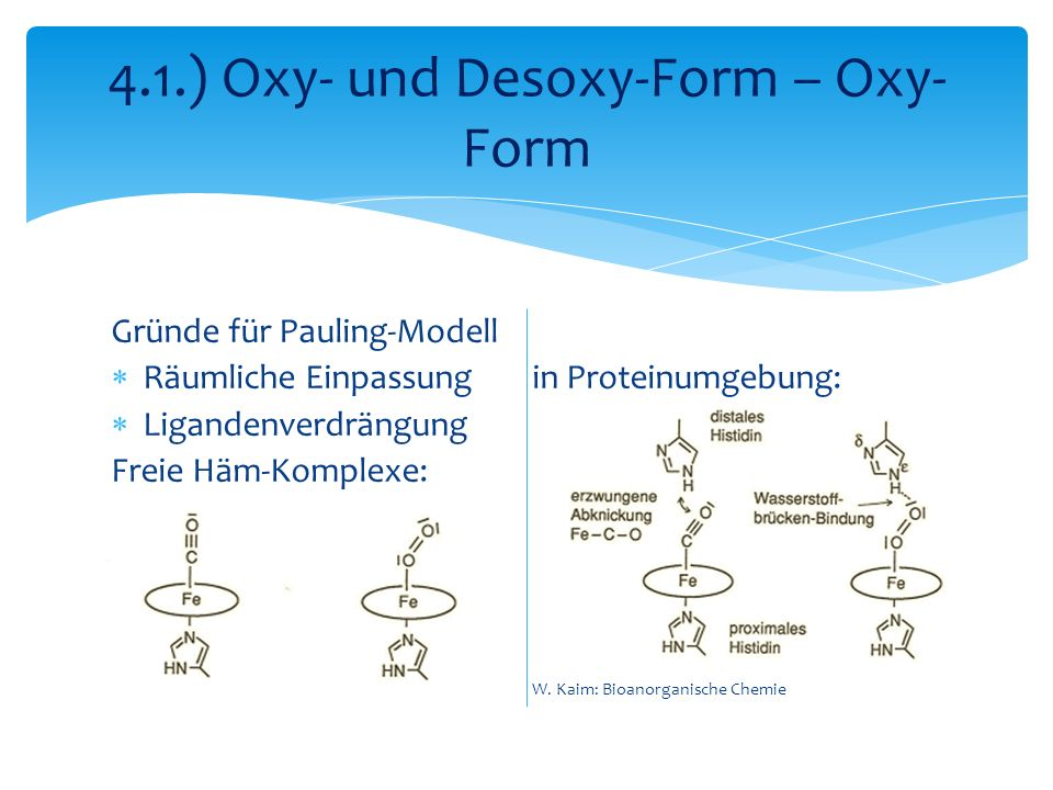 4.1.) Oxy- und Desoxy-Form – Oxy-Form