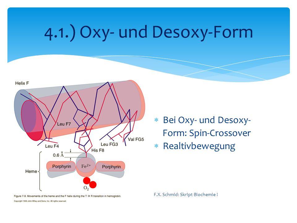 4.1.) Oxy- und Desoxy-Form Bei Oxy- und Desoxy- Form: Spin-Crossover