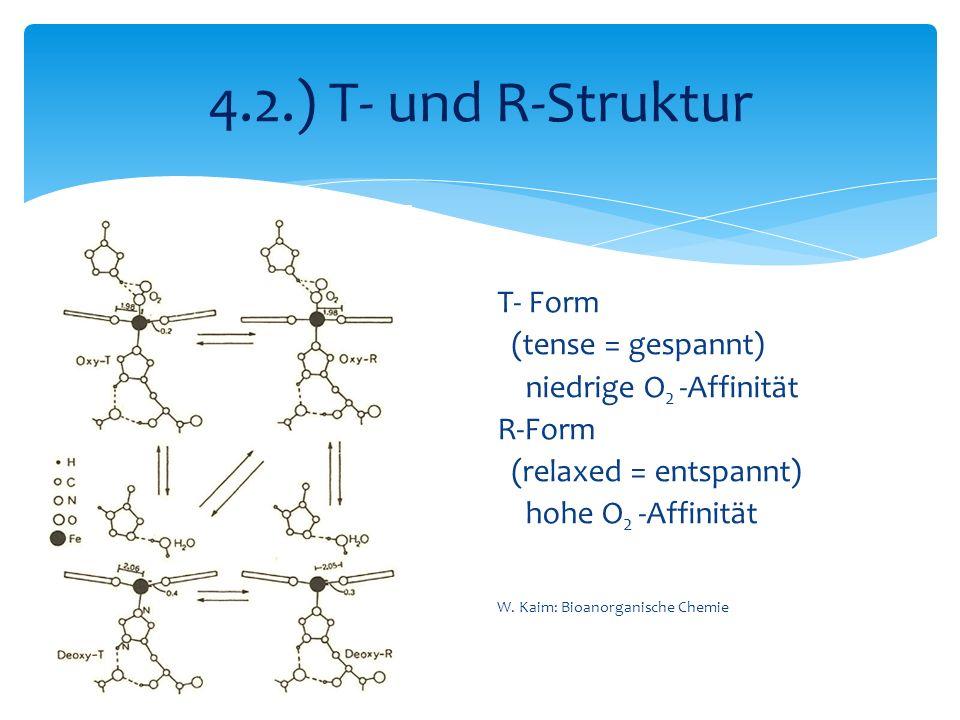 4.2.) T- und R-Struktur T- Form (tense = gespannt)