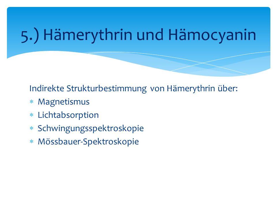 5.) Hämerythrin und Hämocyanin