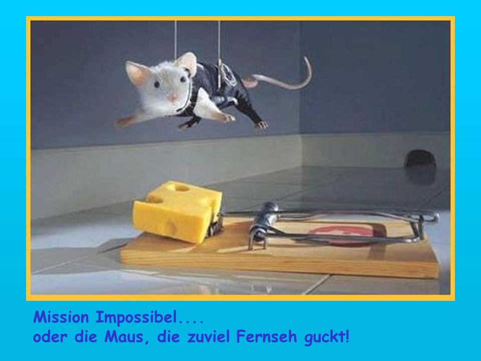 Mission Impossibel.... oder die Maus, die zuviel Fernseh guckt!
