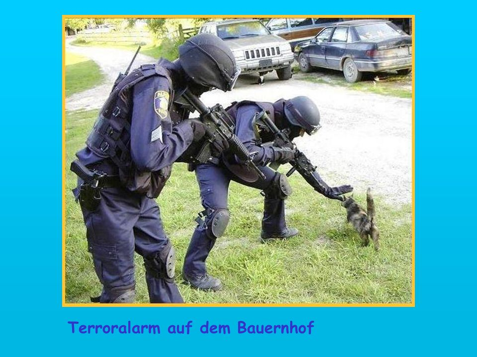 Terroralarm auf dem Bauernhof
