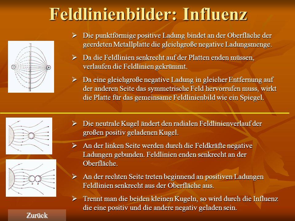 Feldlinienbilder: Influenz
