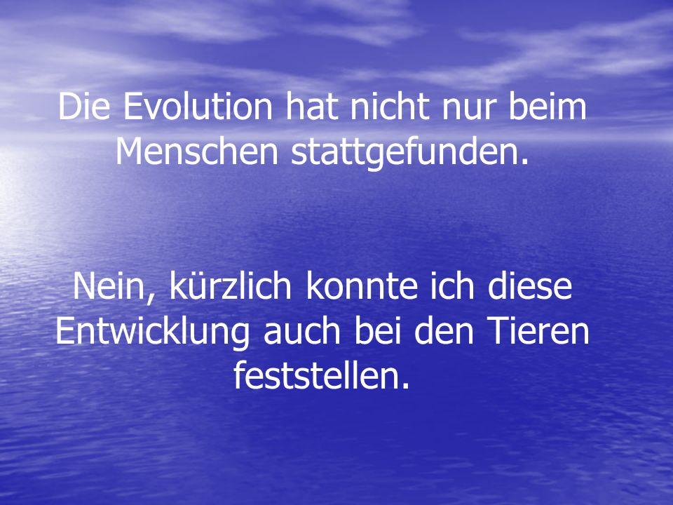 Die Evolution hat nicht nur beim Menschen stattgefunden.