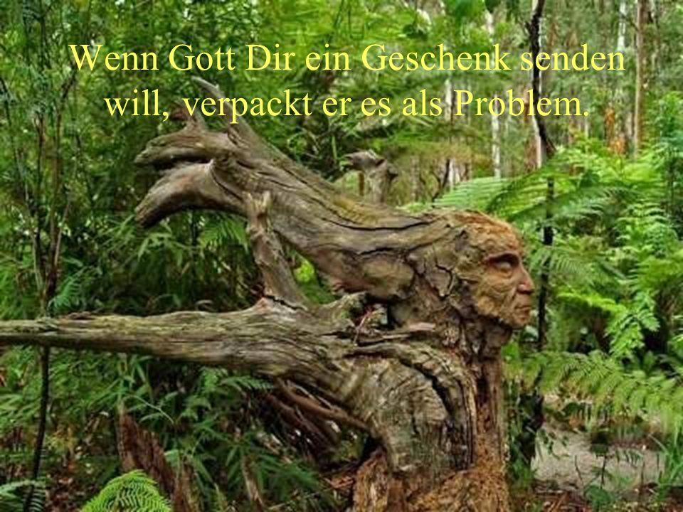 Wenn Gott Dir ein Geschenk senden will, verpackt er es als Problem.