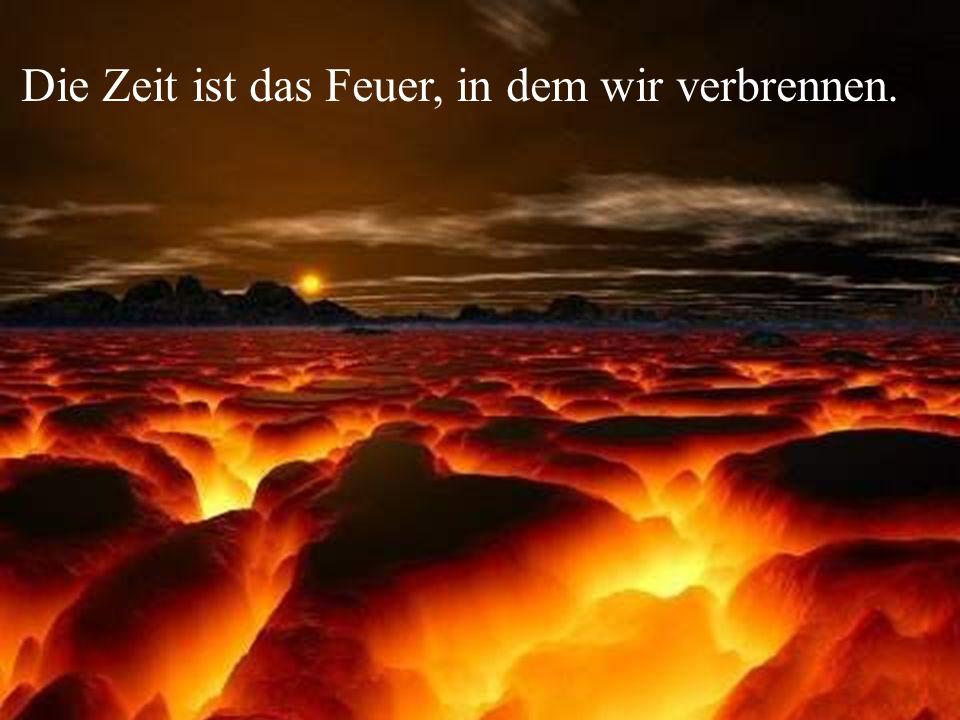 Die Zeit ist das Feuer, in dem wir verbrennen.