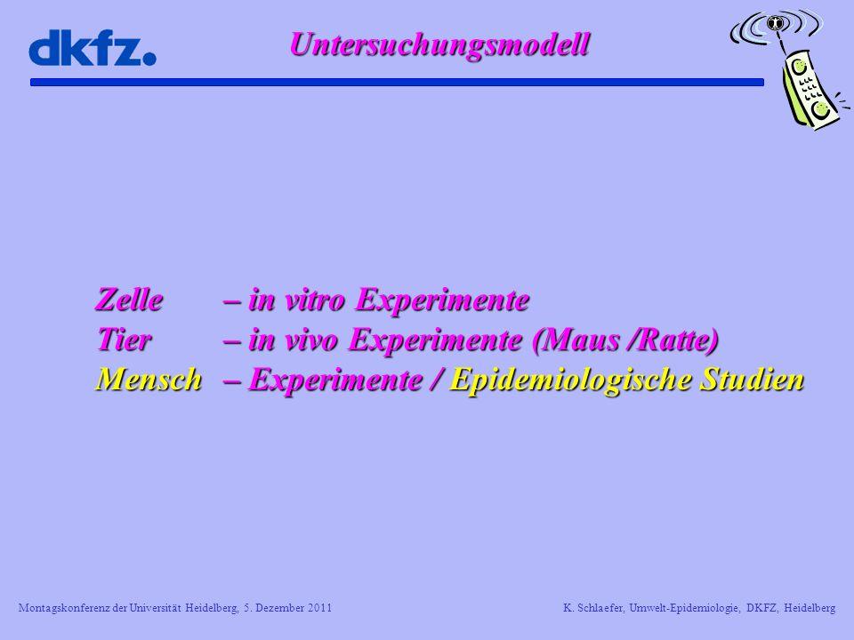 Zelle – in vitro Experimente Tier – in vivo Experimente (Maus /Ratte)