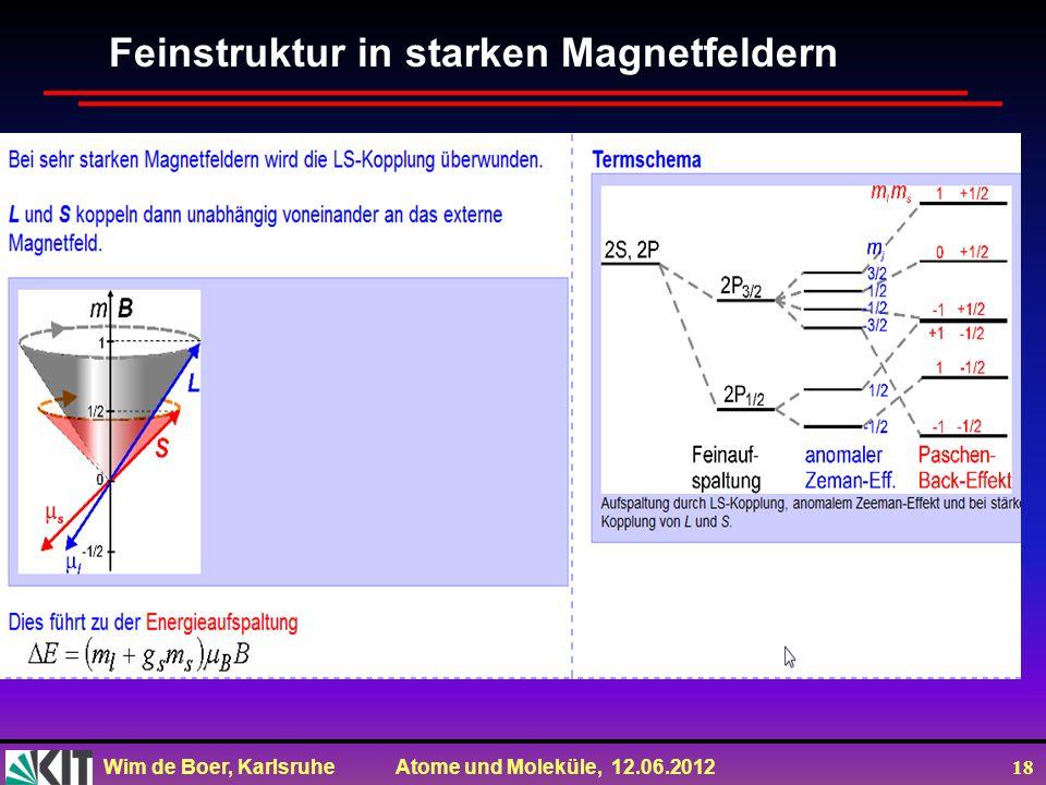 Feinstruktur in starken Magnetfeldern