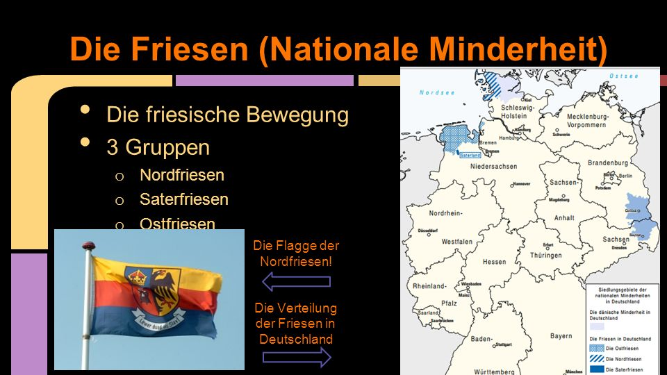 Die Friesen (Nationale Minderheit)