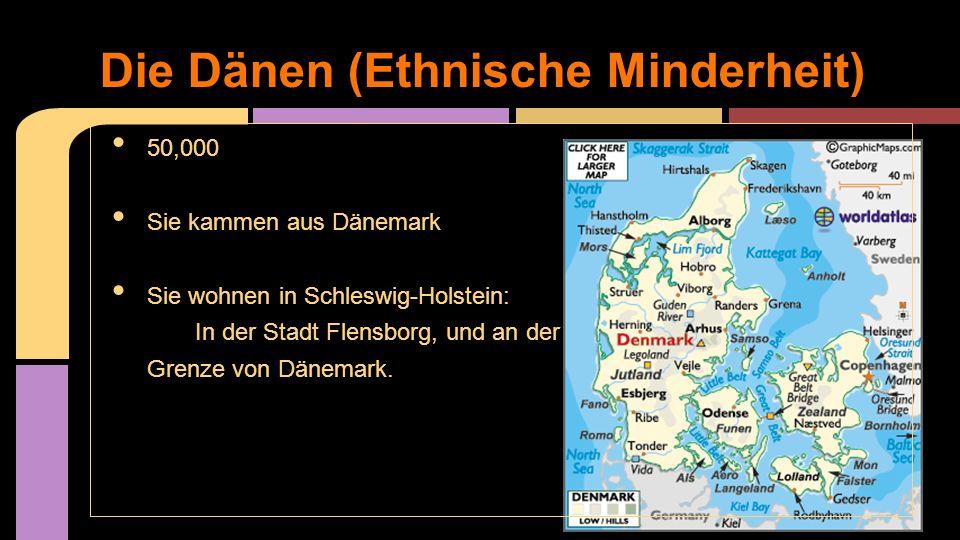 Die Dänen (Ethnische Minderheit)