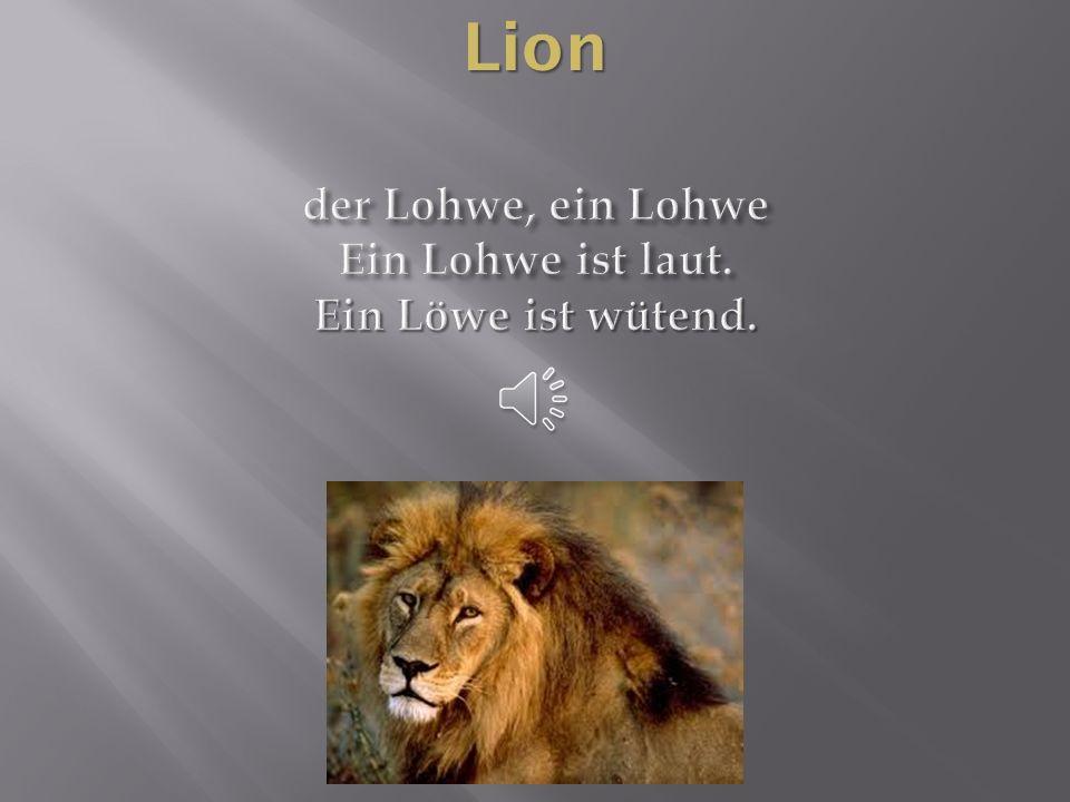 der Lohwe, ein Lohwe Ein Lohwe ist laut. Ein Löwe ist wütend.