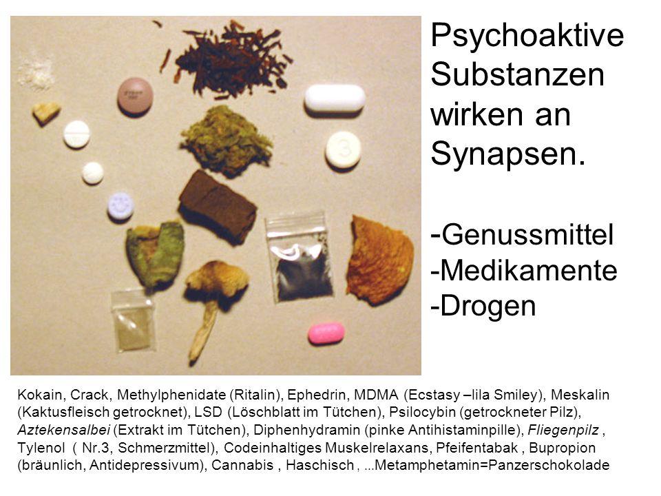 Psychoaktive Substanzen wirken an Synapsen.