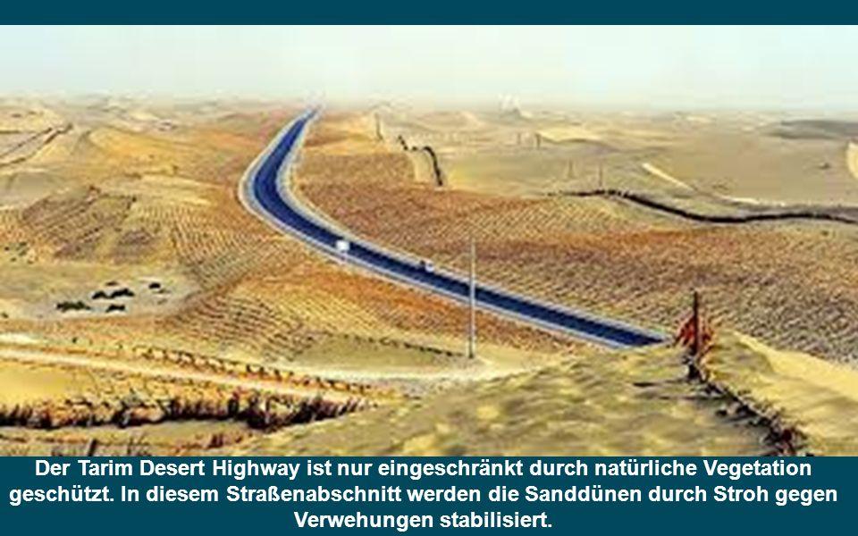 Der Tarim Desert Highway ist nur eingeschränkt durch natürliche Vegetation geschützt.