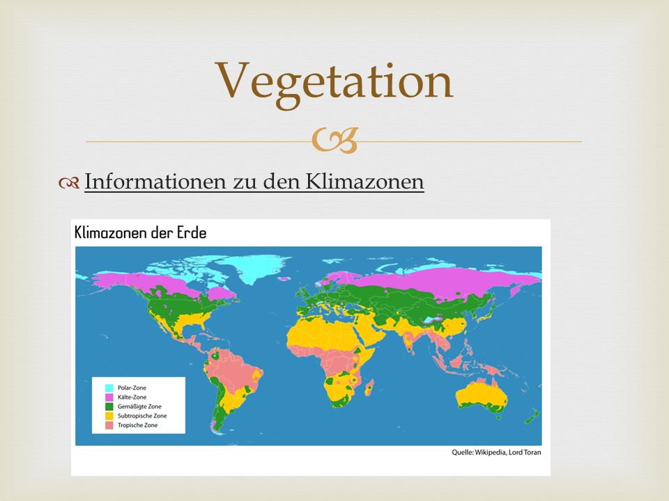 Vegetation Informationen zu den Klimazonen