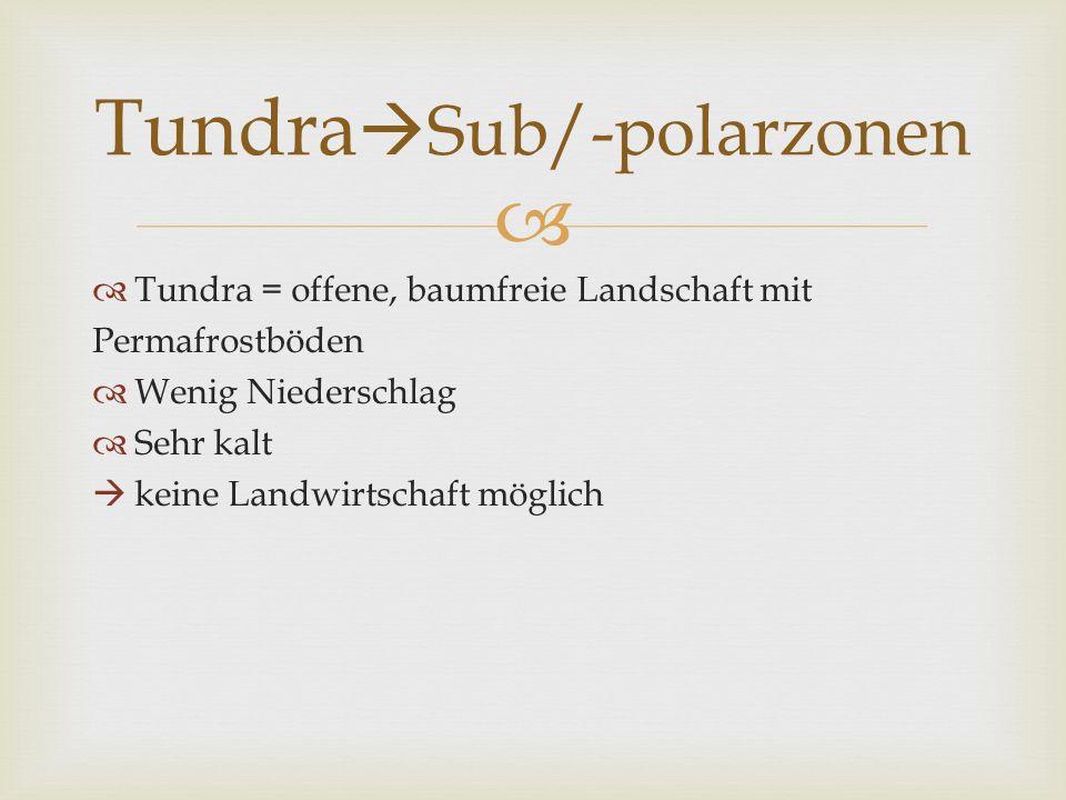 TundraSub/-polarzonen