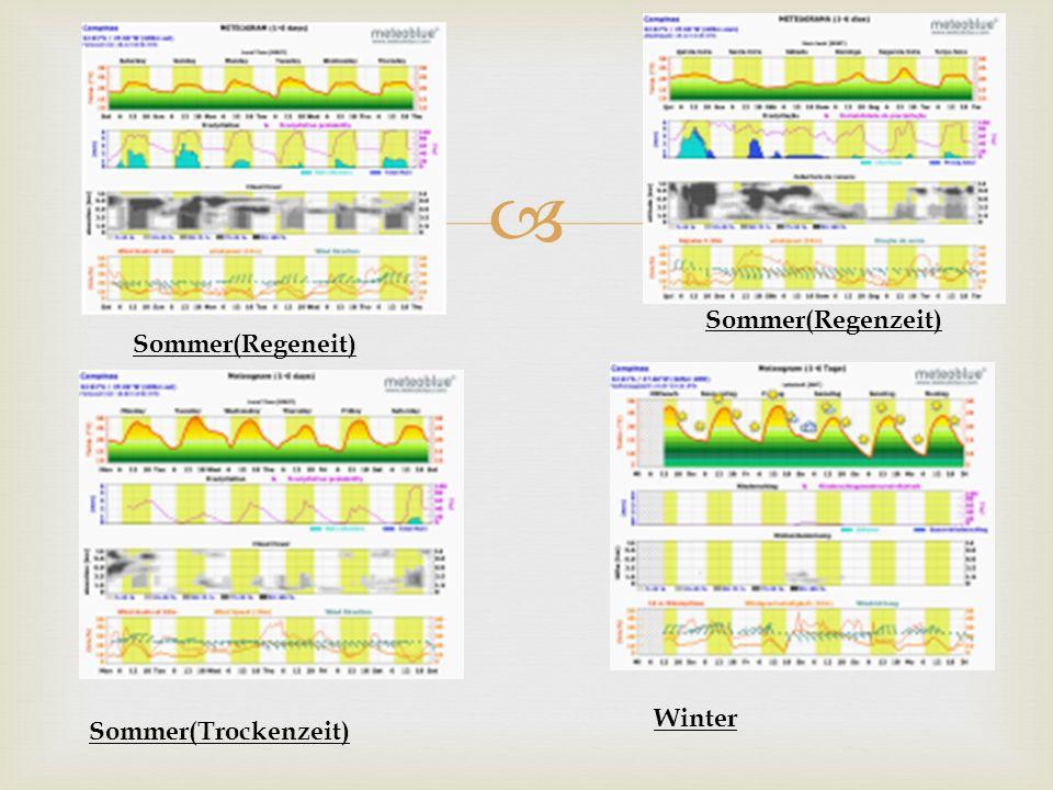 Sommer(Regenzeit) Sommer(Regeneit) Winter Sommer(Trockenzeit)
