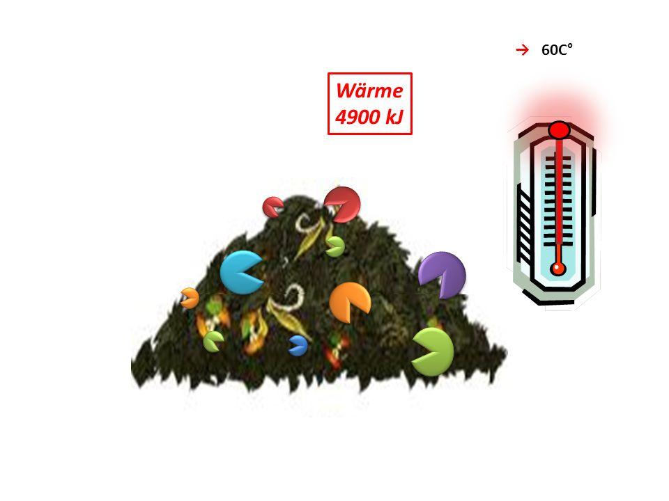 CO2 Wärme 4900 kJ → 60C° → 10 CO2 Kohlendioxid → 6 H2O + NH3
