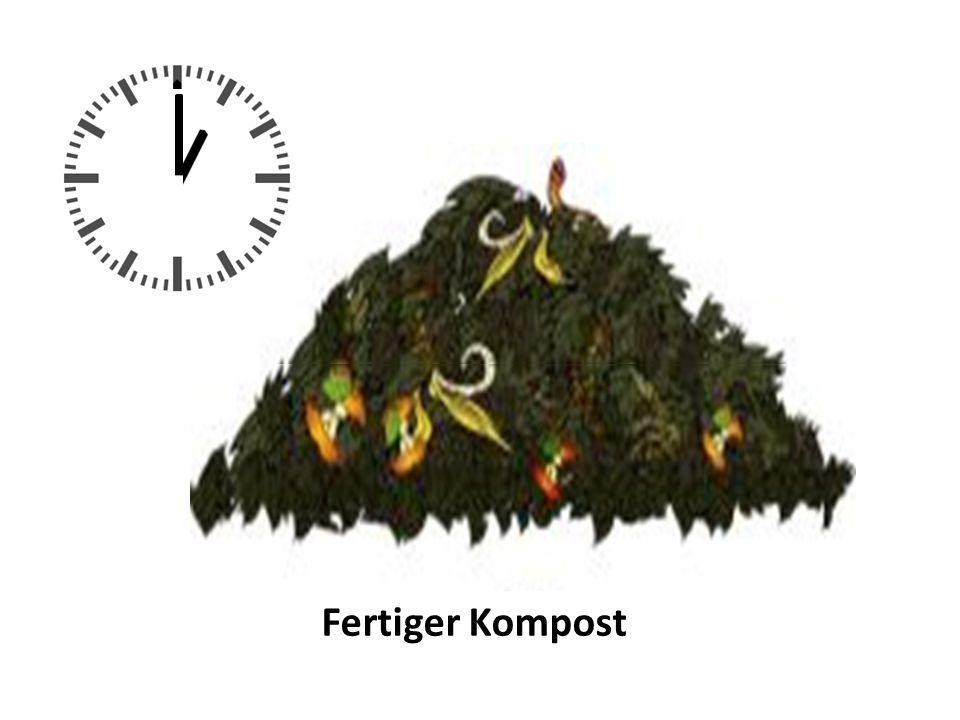 Fertiger Kompost Haufen halbieren, o2 rein Haufen zu