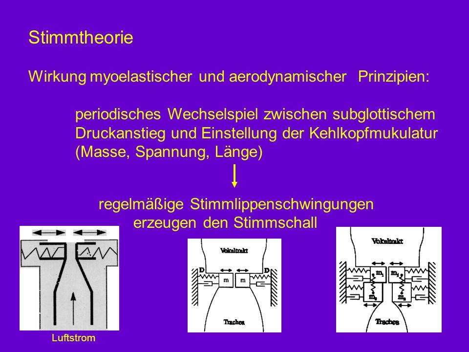 Stimmtheorie Wirkung myoelastischer und aerodynamischer Prinzipien: