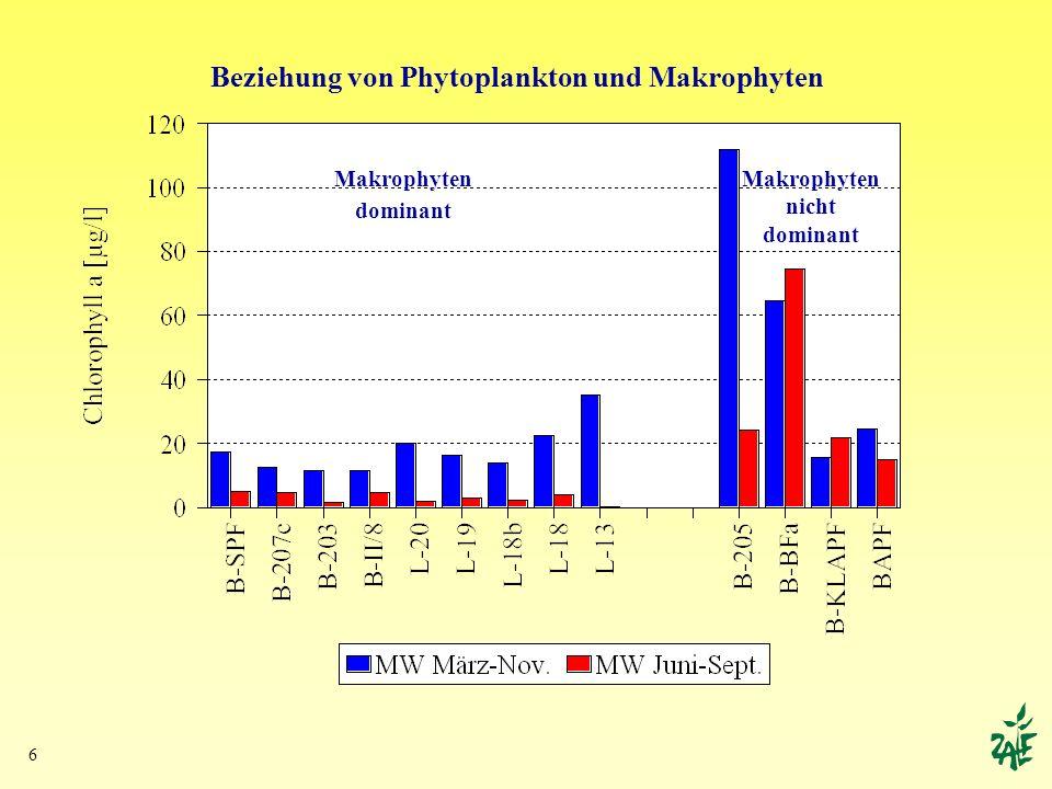 Beziehung von Phytoplankton und Makrophyten