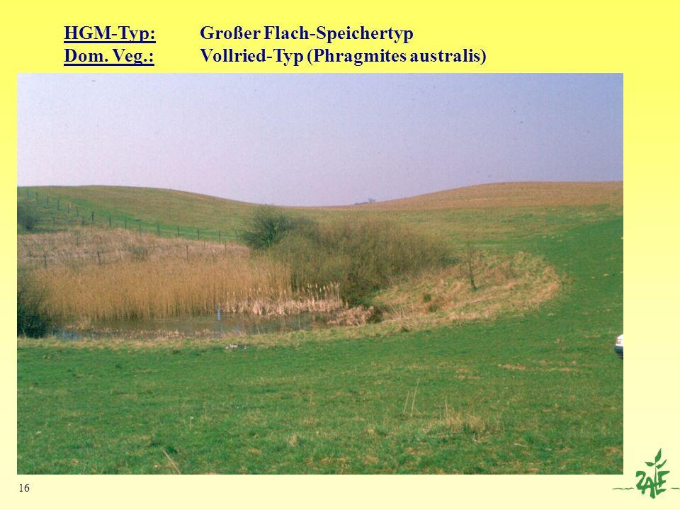 HGM-Typ: Großer Flach-Speichertyp