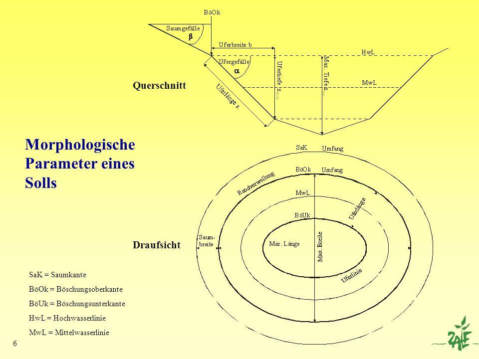 Morphologische Parameter eines Solls