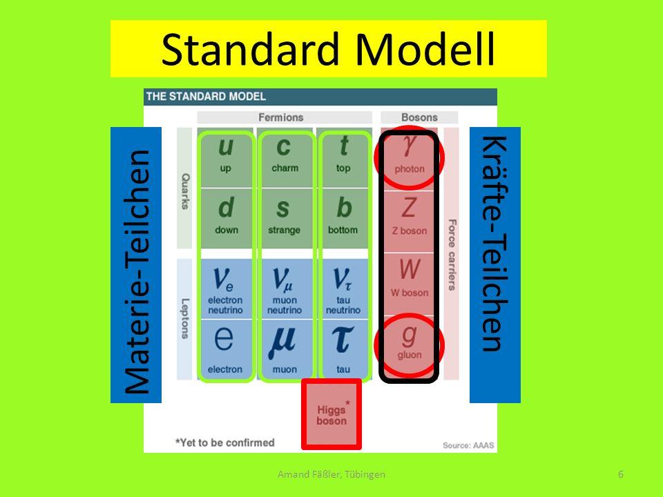 Standard Modell ein elementatarteilchen