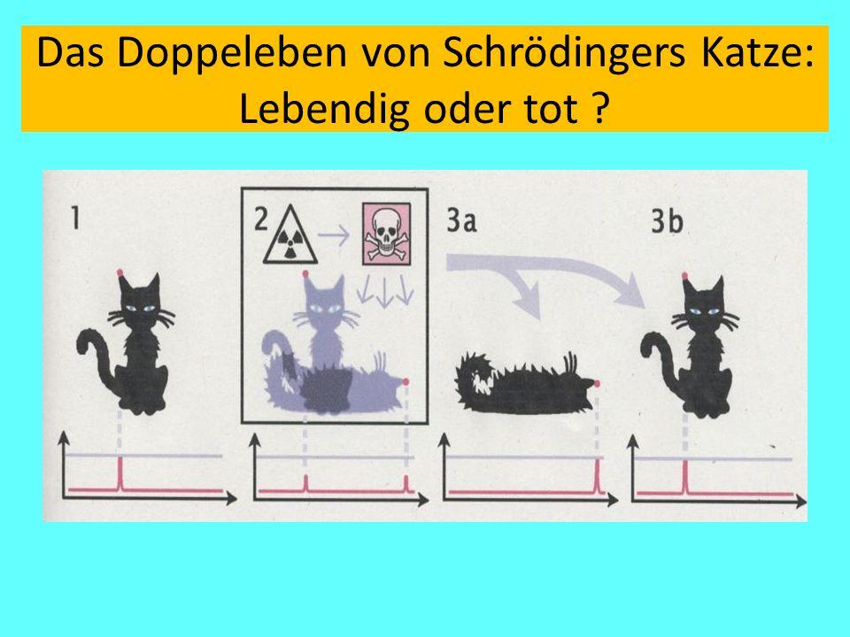 Das Doppeleben von Schrödingers Katze: Lebendig oder tot