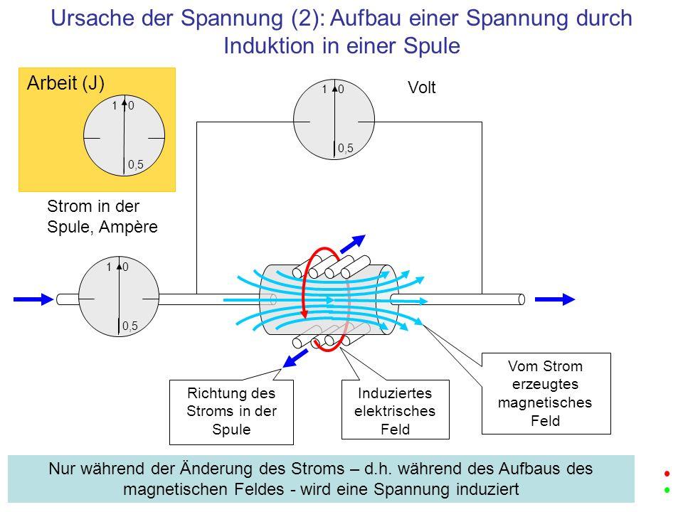Ursache der Spannung (2): Aufbau einer Spannung durch Induktion in einer Spule