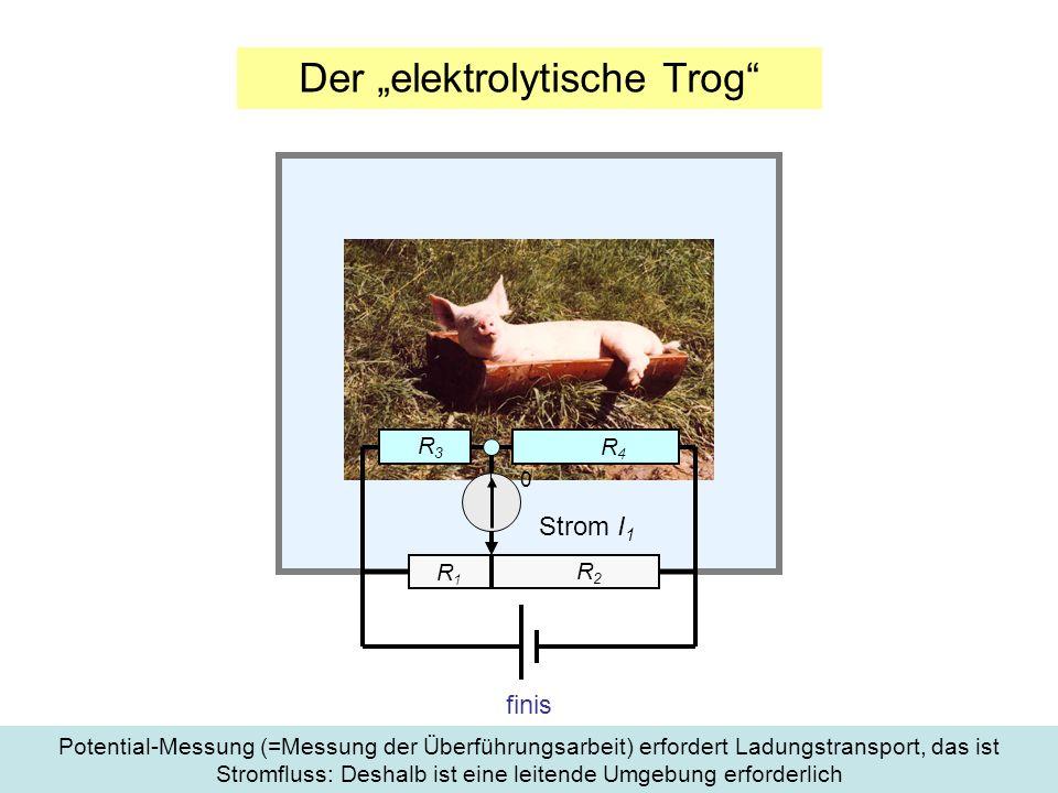"""Der """"elektrolytische Trog"""