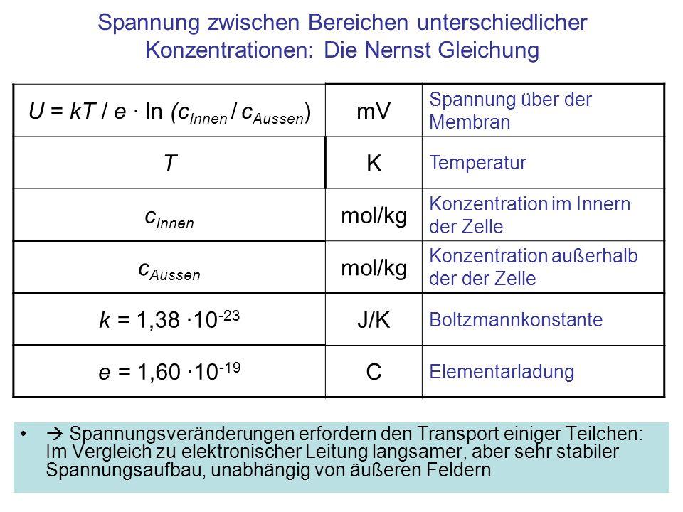 U = kT / e · ln (cInnen / cAussen)