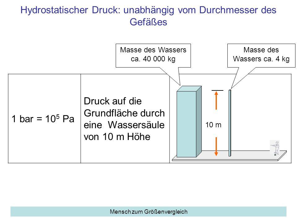 Hydrostatischer Druck: unabhängig vom Durchmesser des Gefäßes