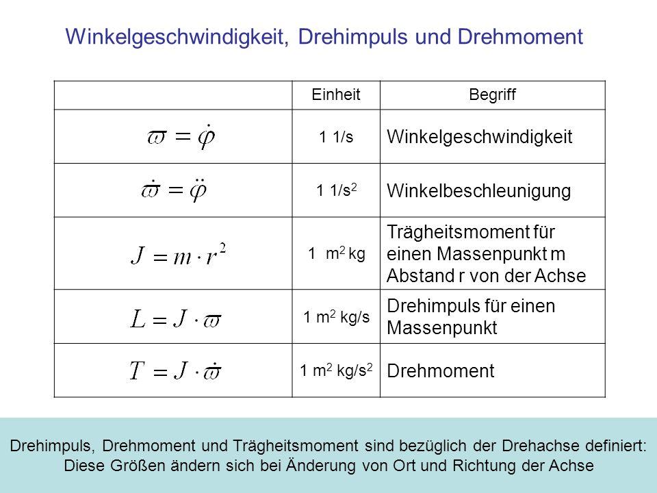 Winkelgeschwindigkeit, Drehimpuls und Drehmoment