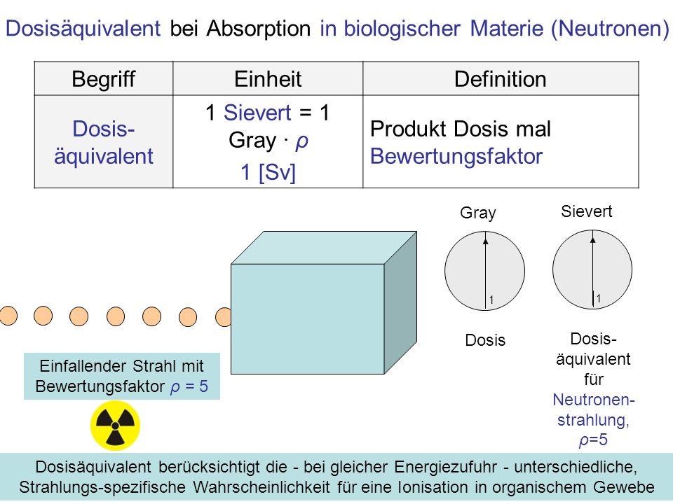 Dosisäquivalent bei Absorption in biologischer Materie (Neutronen)