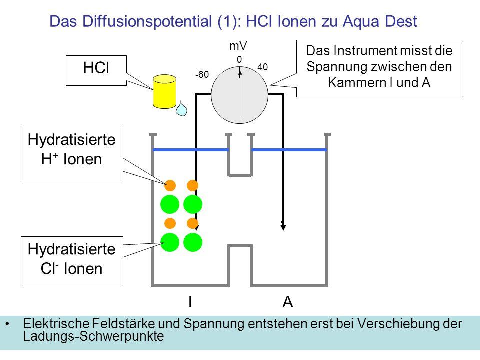 Das Diffusionspotential (1): HCl Ionen zu Aqua Dest