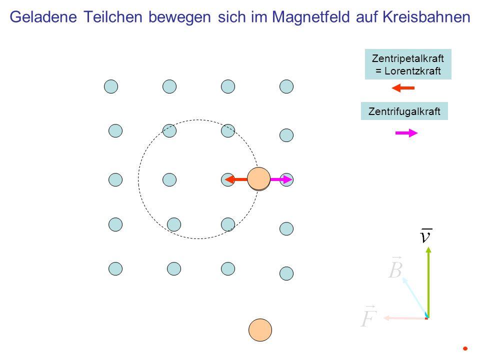 Geladene Teilchen bewegen sich im Magnetfeld auf Kreisbahnen